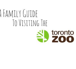 Toronto Zoo Attractions