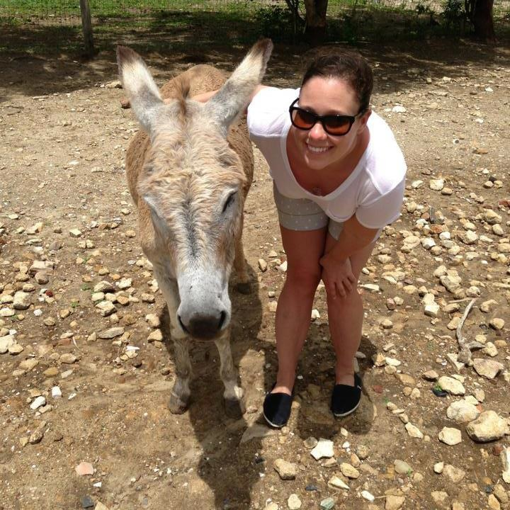 Ushi Antigua Donkey Sanctuary