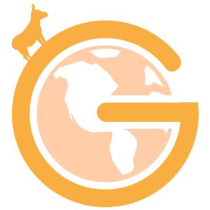 GlobeDrop Logo