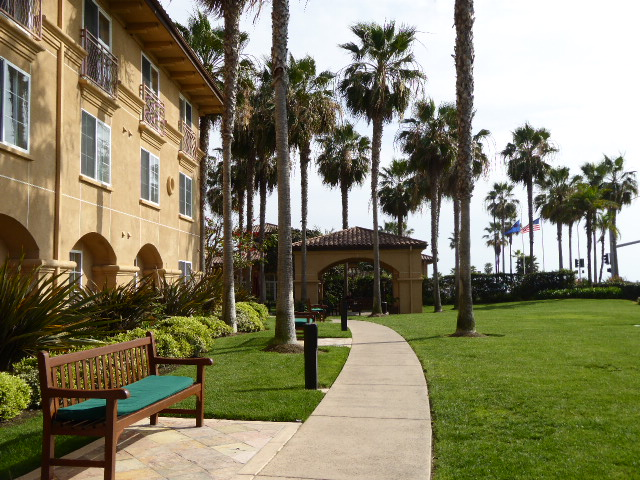 hilton garden inn best hotel near legoland california. Black Bedroom Furniture Sets. Home Design Ideas